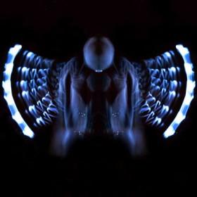 HO011 Butterfly