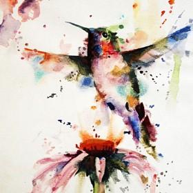 HO026 Hummingbird II