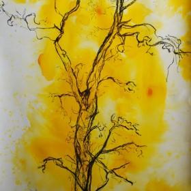 LO193 Tree Study III