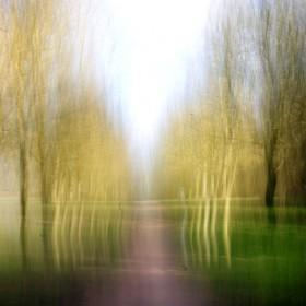 SC096 Abstract Landscape I