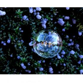SC151 Rainbow Bubbles III