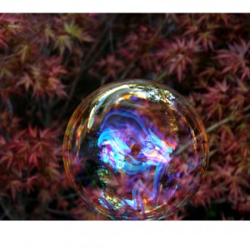 SC153 Rainbow Bubbles V