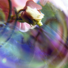 SC162 Soft Florals II