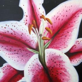 RA291 Tiger Lily