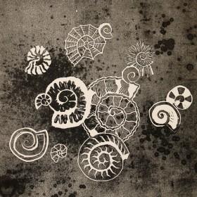 LO386 Ammonites V