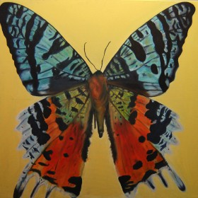 RA337 Tropical Butterfly I