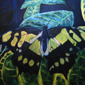 RA338 Tropical Butterfly II